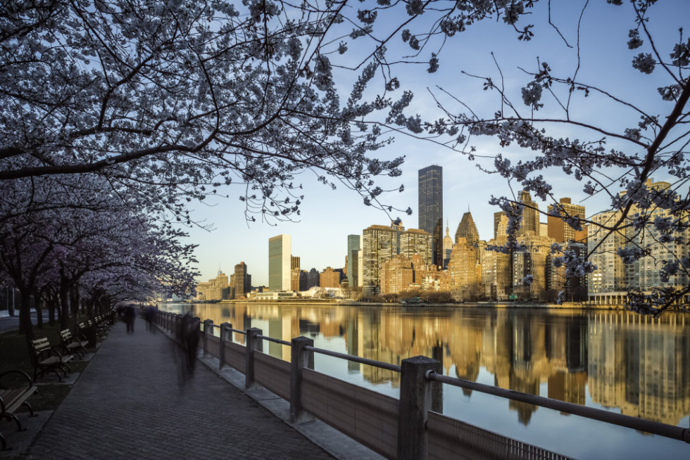 The promenade on Roosevelt Island with the Manhattan skyline in the distance. (Mabry Campbell)